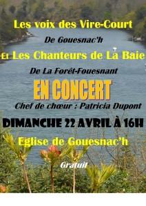 Affiche Gouesnac'h 22 04 2018 3